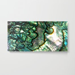 Shimmering Green Abalone Mother of Pearl Metal Print