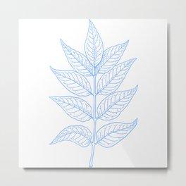 Ash Leaves In Blue Minimalist Nature Metal Print