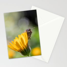 Funny insect on yellow flower Stationery Cards