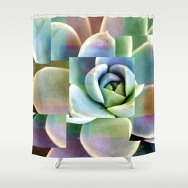 Succulents collage Shower Curtain
