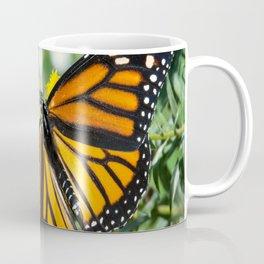 Beautiful Monarch Butterfly Coffee Mug