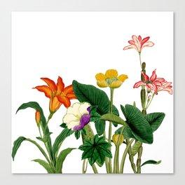 Vintage floral board white Canvas Print