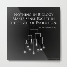 Light of Evolution Metal Print