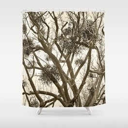 Leafless Tree in Winter I Shower Curtain
