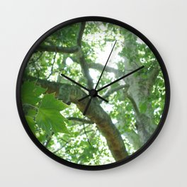 Large Old Tree Wall Clock