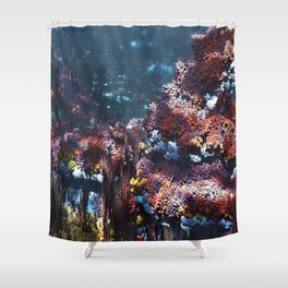 Symbiota Shower Curtain