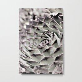 Succulent Close-Up Metal Print