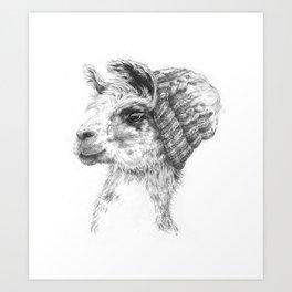 Wooly Llama Art Print