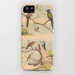 Cruikshank George 1792 1878 _ _1041 An introduction iPhone Case
