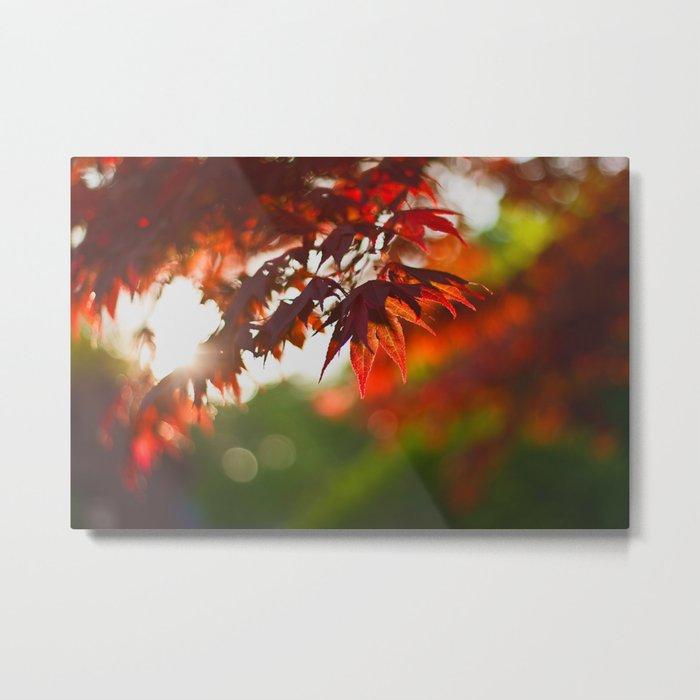 Indian Summer III Season Autum red Leaves Fall #Society6 Metal Print