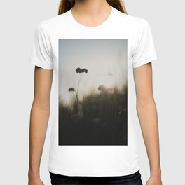 silhouetted ... T-shirt
