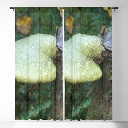 Woodland Plants Blackout Curtain