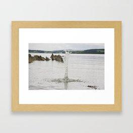 Splash 2 Framed Art Print