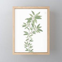 Alegra Framed Mini Art Print