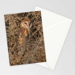 THE OLD BARN OWL Stationery Cards