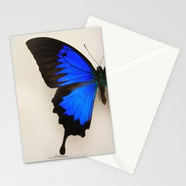 Papillons2 Stationery Cards