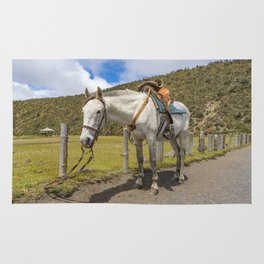 White Horse Tied Up at Cotopaxi National Park Ecuador Rug