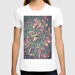 Autumn Leaves Before September Photography Nature Fall Colors Summer #GaneneKPhotography T-shirt