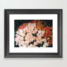 Paris roses Framed Art Print
