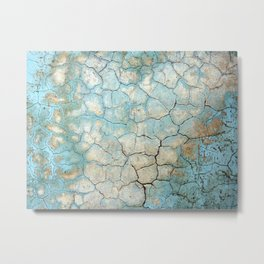 Corroded Beauty Metal Print