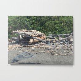 Hut made of driftwood at Klamath Beach Metal Print