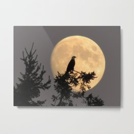 Lunar Eagle Metal Print