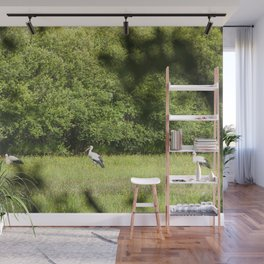 Group of storks feeding Wall Mural