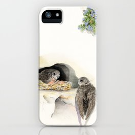 Swift - nesting bird on the Ligurian coast iPhone Case