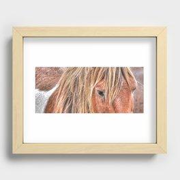Shaggy Island Pony Recessed Framed Print