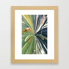 Sutil Framed Art Print
