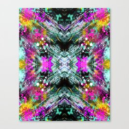 Mirror Print Canvas Print