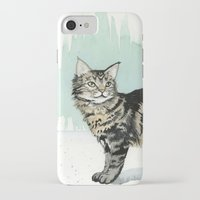 maine iPhone & iPod Cases featuring Maine Coon by Priscilla George