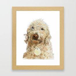 Labradoodle Ginger Framed Art Print