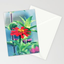 Red Pop Stationery Cards