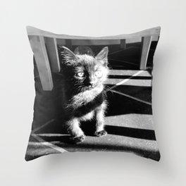 Scruffy Cat Throw Pillow