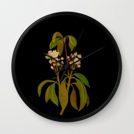 Kalmia Latifolia Mary Delany Floral Flower Paper Collage Delicate Vintage Black Background Botanical Wall Clock