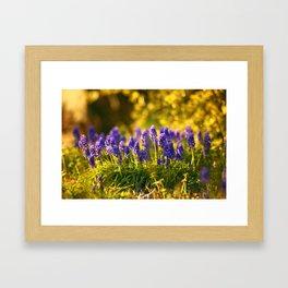 In the Weeds Framed Art Print
