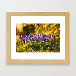 In the Weeds Framed Art Print