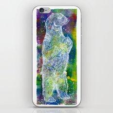 Star Bear iPhone & iPod Skin