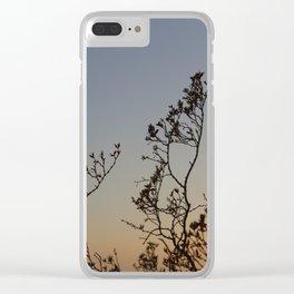 Desert Sunset Heat Clear iPhone Case