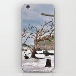 Drift Wood Beach 4 iPhone Skin