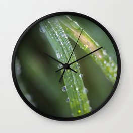 Raindrops on blades of grass Wall Clock