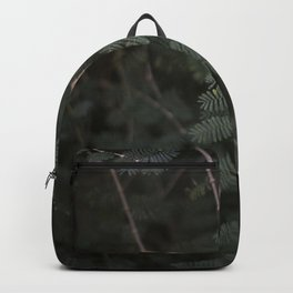 Plant - Fern 3 Backpack
