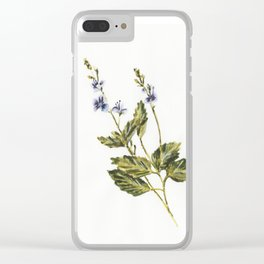 Veronica chamaedrys Clear iPhone Case