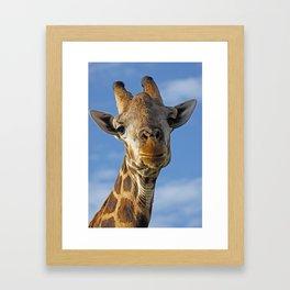 The Giraffe II Framed Art Print