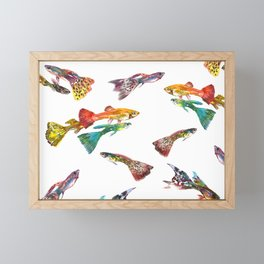 Tropical Colors, Guppy Aquarium Fish , Aquarium Art Underwater Framed Mini Art Print