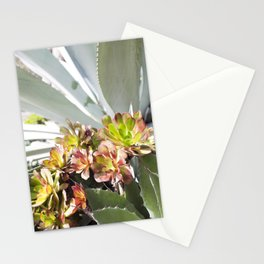 Succulent Layers Stationery Cards