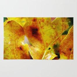 Autumn leaves print. Rug