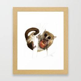 Munching Mouse Lemur Framed Art Print