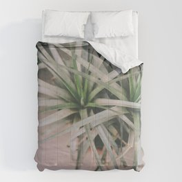 Air Plant #1 Comforters